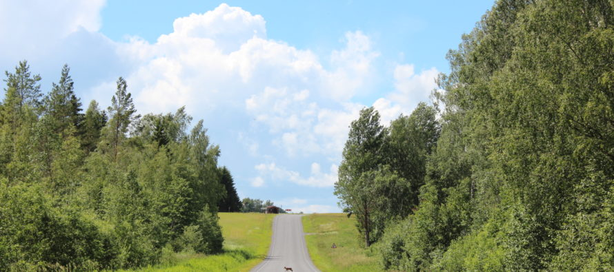 Helena-Reet: Semester (del 2) – Ruudiküla i Viljandi