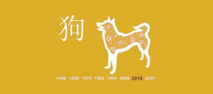 GRUNDLIGT kinesiskt horoskop för 2018: Kolla upp vad Hundens år som börjar den 15 februari kommer att föra med sig för dig
