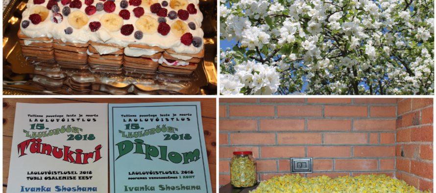 Helena-Reet: Att samla ört växter, Estella Elishevas födelsedag och Ivanka Shoshanas seger i sångtävling