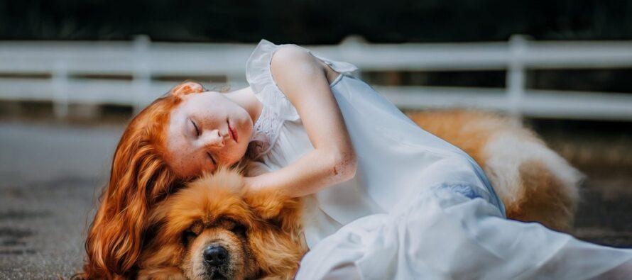 UNDERSÖKNING: ATT SOVA MED HUND ger dig bättre sömn